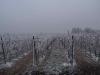 rauhreif-weihnachten-2007-an-den-dornfeldern-in-den-elfmorgen-1.jpg