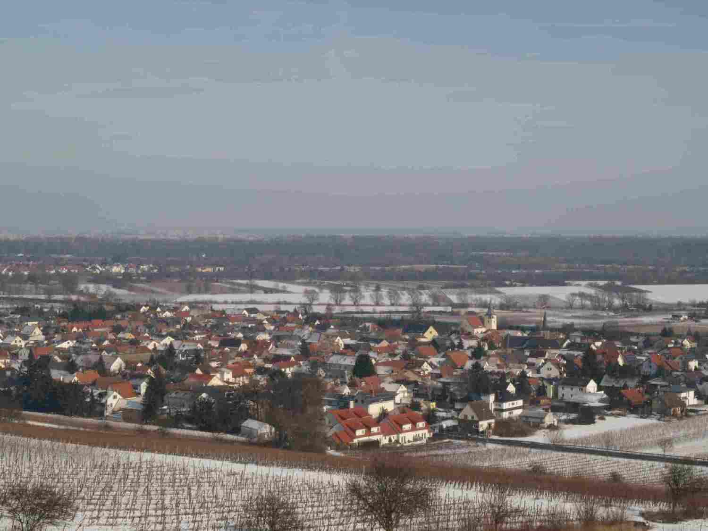 blick-richtung-oppenheim-19-mit-dienheim