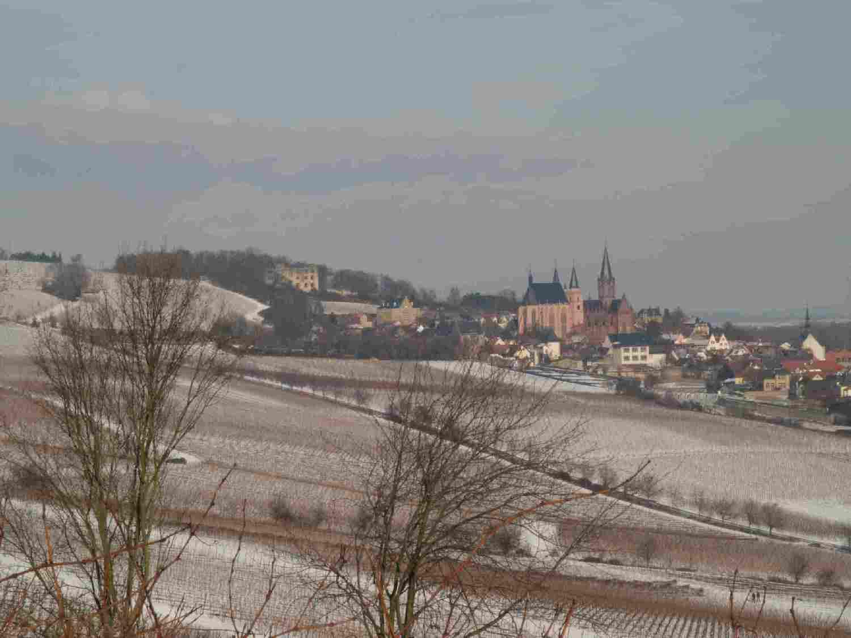 blick-richtung-oppenheim-mit-katharinenkirche-4