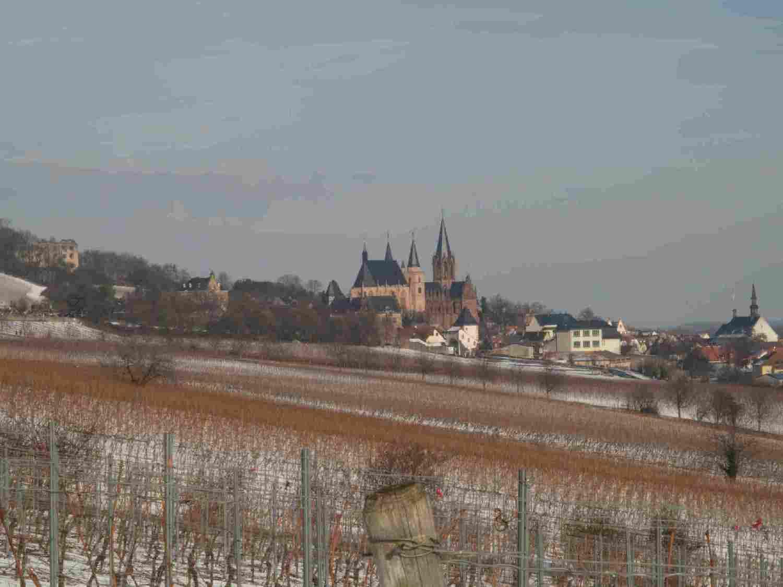 blick-richtung-oppenheim-mit-katharinenkirche-7