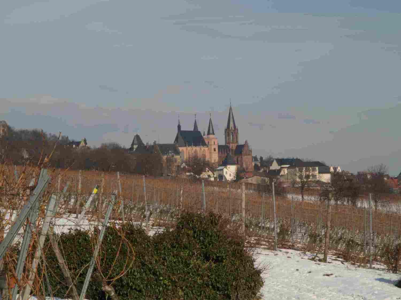 blick-richtung-oppenheim-mit-katharinenkirche-9